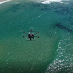 Real-Time Automated Shark Detection System