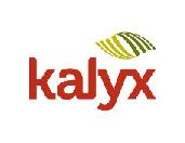 scoutaerial-clientlogo-kalyx170