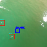 Machine Learning for detecting sharks